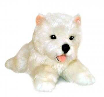 Bocchetta West Highland Terrier Puppy - Pookie