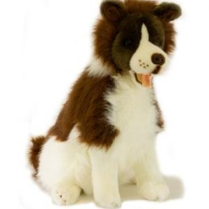 Bocchetta Border Collie - Brandy