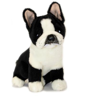 Bocchetta French Bulldog - Pierre